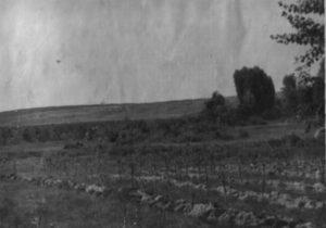 Місце розстрілу сестер Однопозових-Цаблинських та їх брата.