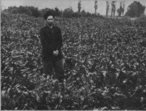 Песиголовець І.Д. показує місце поблизу села Оксютинці(на території трубної бази), де ним разом з іншими карателями проводились розстріли радянських громадян.