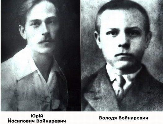 Юрій та Володимир Войнаревич