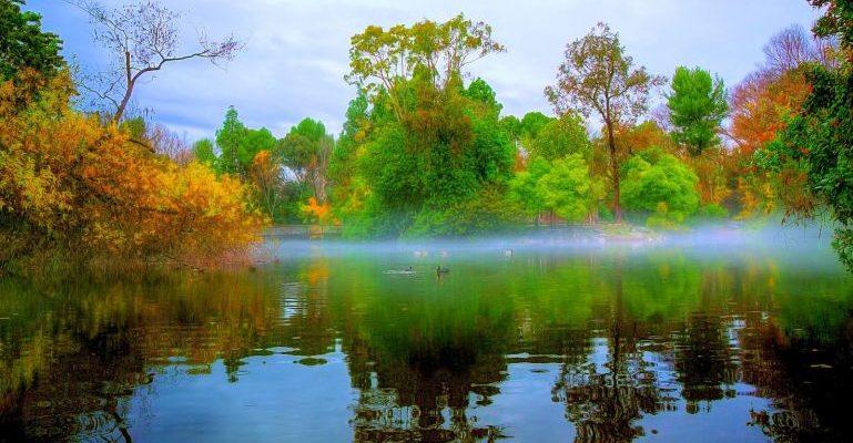 Краса природи