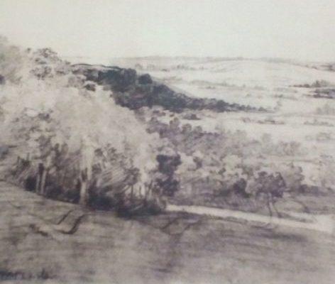 Картина Т.Г. Шевченка «Урочище Стінка»