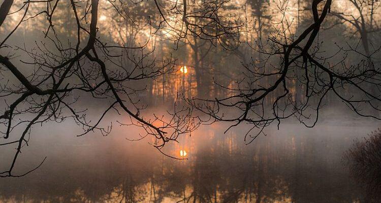 Осінній_туман