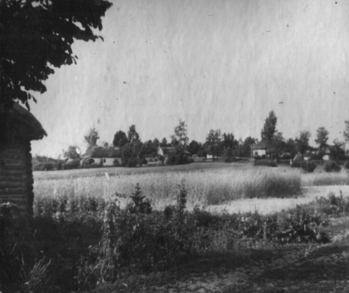 Хутір Миколаївка, в якому проживали  радянські активісти, що загинули від рук карателів